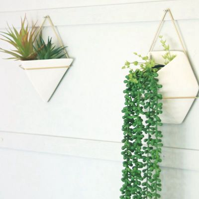 ceramic wall planters outdoor uk